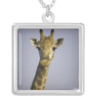 Giraffa Camelopardalis Necklace