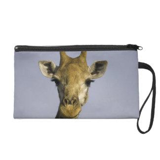 Giraffa Camelopardalis Wristlet