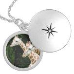 giraffe-120.jpg round locket necklace