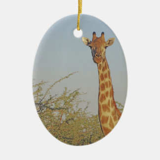 GIRAFFE 15  BOTSWANA CHRISTMAS ORNAMENT
