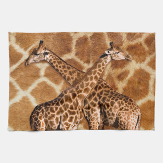 Giraffe 1A  Kitchen Towels