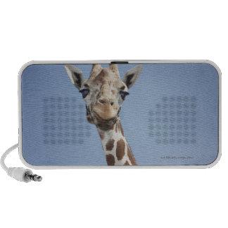 Giraffe 2 portable speakers
