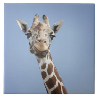 Giraffe 2 tile