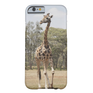 Giraffe 5 barely there iPhone 6 case