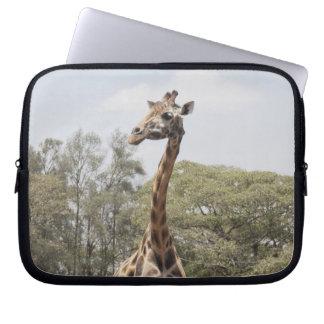 Giraffe 5 laptop sleeve