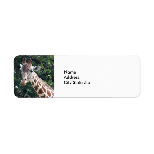 Giraffe 7032