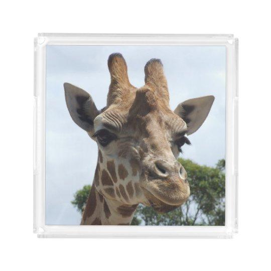 Giraffe Acrylic Perfume Tray