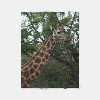 Giraffe Adventure, Small Fleece Blanket