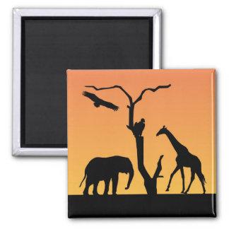 Giraffe african sunset silhouette fridge magnet