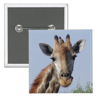 Giraffe and oxpecker Button