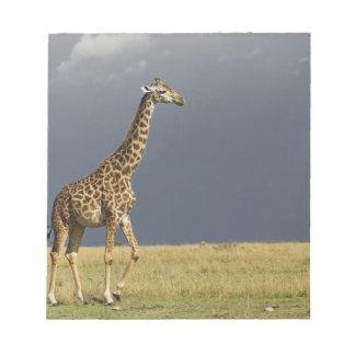 Giraffe and stormy sky, Giraffa camelopardalis Notepad