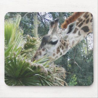 Giraffe at Lunch Mouse Pads