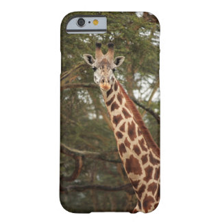 Giraffe Barely There iPhone 6 Case