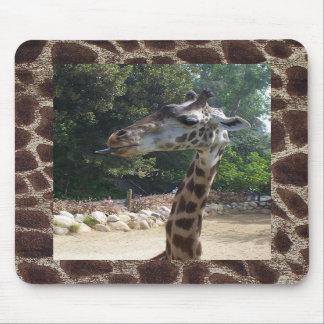Giraffe Being Naughty Mousepad