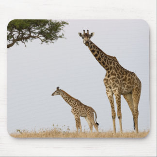Giraffe Calf and mummy Mouse Mat