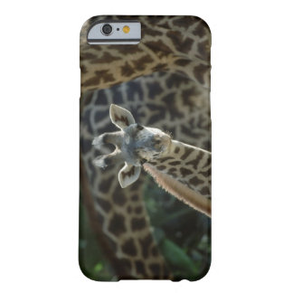 Giraffe calf with giraffes barely there iPhone 6 case