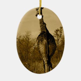 Giraffe Christmas Ornament