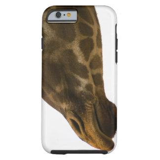 Giraffe,close up tough iPhone 6 case