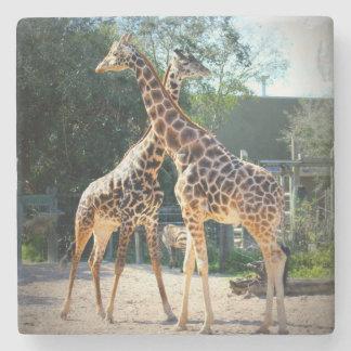 giraffe coaster stone beverage coaster