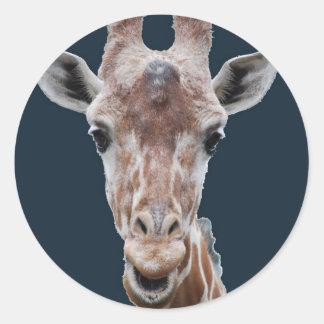 giraffe cutout navy round sticker