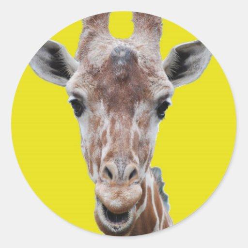 giraffe cutout yellow round stickers
