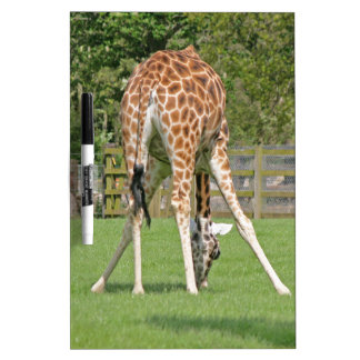 Giraffe Design Dry Erase Board