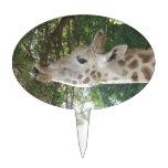 Giraffe Eating Cake Toppers