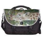 Giraffe Eating Commuter Bags