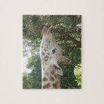 Giraffe Eating Jigsaw Puzzle