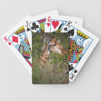 Giraffe Eating Leaves Bicycle Playing Cards