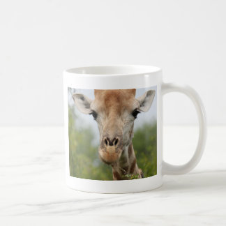 Giraffe Face Basic White Mug