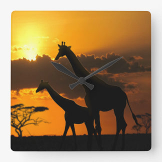 Giraffe Family 2 Wall Clocks