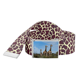 Giraffe Family On Grassy Hilltop Belt