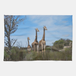 Giraffe Family On Grassy Hilltop Tea Towel
