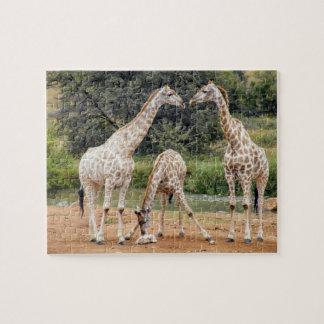 Giraffe Family Puzzle