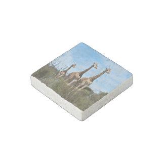 Giraffe Family Stone Magnet