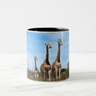 Giraffe Family Two-Tone Coffee Mug