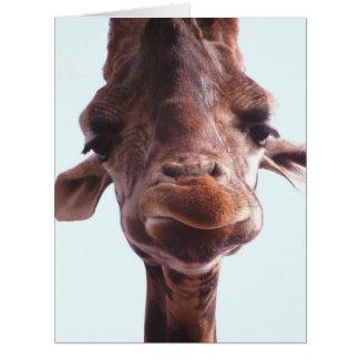 Giraffe Funny Face Big Greeting Card