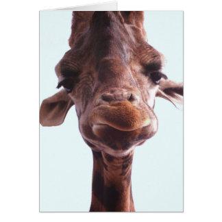Giraffe Funny Face Greeting Card