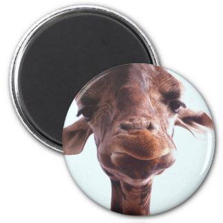 Giraffe Funny Face 6 Cm Round Magnet