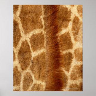 Giraffe Fur Poster