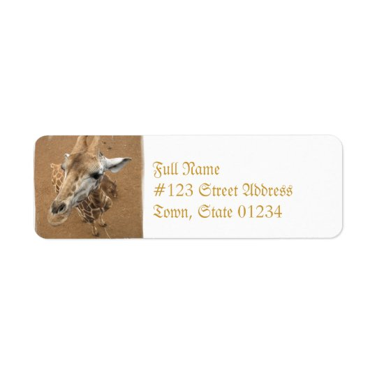 Giraffe Gaze  Mailing Labels
