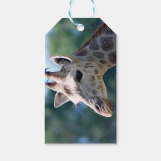 Giraffe Gift Tags