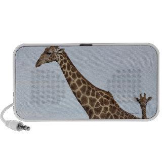 Giraffe (Giraffa camelopardalis), Chobe National Mp3 Speakers