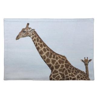 Giraffe (Giraffa camelopardalis), Chobe National P Placemat