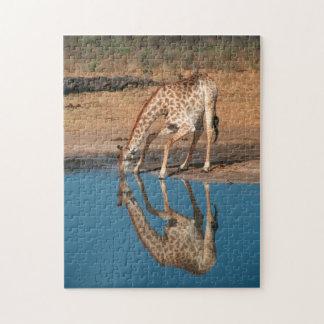 Giraffe (Giraffa Camelopardalis) Drinking Jigsaw Puzzle
