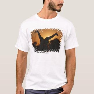 Giraffe (Giraffa camelopardalis) Pair T-Shirt
