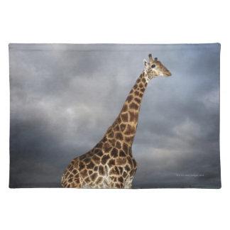 Giraffe (Giraffa camelopardalis) Placemats