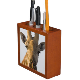 Giraffe (Giraffa camelopardalis) portrait Desk Organiser