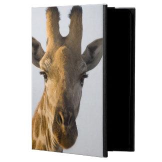 Giraffe (Giraffa camelopardalis) portrait iPad Air Covers